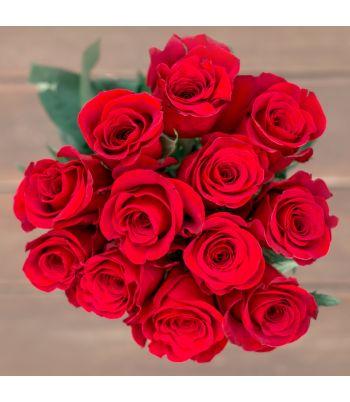 Classic Red Dozen-Roses