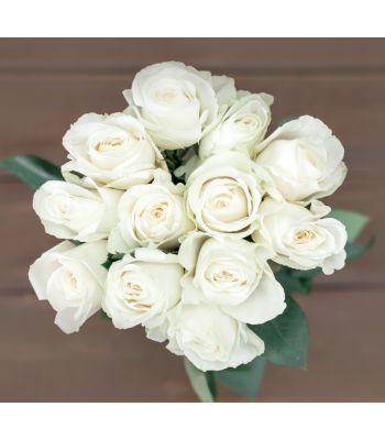 White Dozen Roses