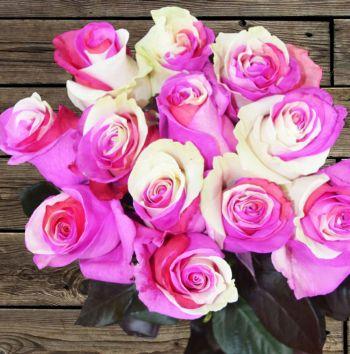 White-Pink-Purple Combination